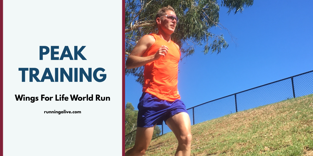 Peak training block for the Wings For Life World Run 2018. The focus is on race pace and recovery